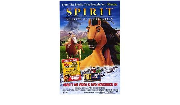 C USA NEW Stallion of the Cimarron Movie POSTER 27 x 40 Matt Damon Spirit