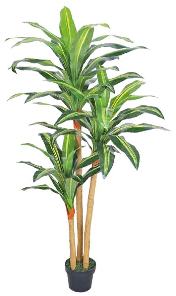 Decovego Drachenbaum Kunstpflanze Kunstbaum Künstliche Pflanze Pflanze Pflanze mit Topf 180cm Echtholz 3dc9e9