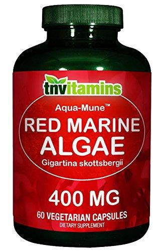 Red Algae Skin Care