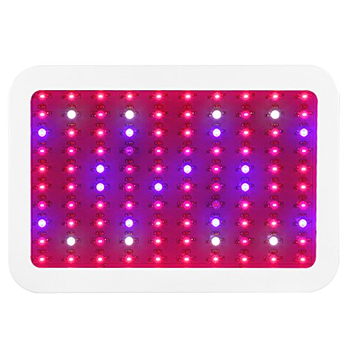 LED Grow Light, LAPUTA 1000W Full Spectrum Growing Lamps with UV&IR for Greenhouse Hydroponic Indoor Plants Veg and Flower All Phases of Plant Growth (10W Leds 100pcs) by LAPUTA