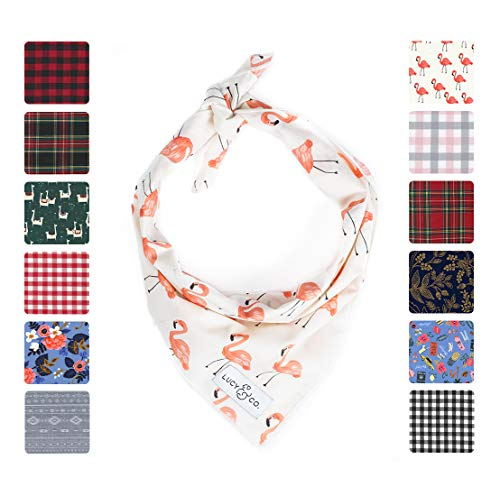 Lucy & Co. Dog Bandana - Designer Puppy Accessory for Boy and Girl Dogs - Includes 1 Limited Edition Print Bandana ()