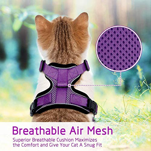 "rabbitgoo Cat Harness and Leash for Walking, Escape Proof Soft Adjustable Vest Harnesses for Cats, Easy Control Breathable Reflective Strips Jacket, Purple, S(Chest: 18"" - 20"")"