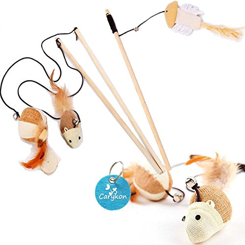 Carykon Natural Sisal Wand Teasers and Exerciser for Cat Kitten with Mouse/Pumpkin/Fish Toy, Bell, Feather, Elastic String and Sturdy Wood Rod, Set of (Kitty Teaser)