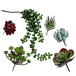Plantastyck Artificial Succulent Plant Picks Unpotted Assorted Faux Echeveria - Fake Succulent 6 Pack in Greens & Red for Floral Arrangement Home Decor Wedding Fairy Garden Bouquet Centerpiece 2