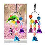 Edtoy Bird Ring Bell Chew Toys ,Parrot Hanging Swing Cage Toy