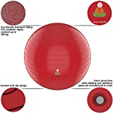 Exercise Ball Stability Fitness Balls | Best