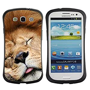 "Pulsar iFace Series Tpu silicona Carcasa Funda Case para SAMSUNG Galaxy S3 III / i9300 / i747 , León divertido Dormir Cansado soñoliento lindo"""