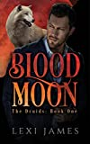 Blood Moon (The Druids Book 1)