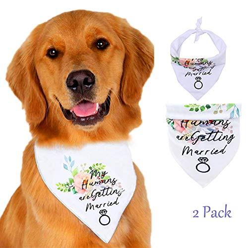 Yu-Xiang 2 Pack Flower Dog Bangdanas Valentine's Day Rose Dog Bandana Pet Flower Triangular Binder Cat Valentine's Day…