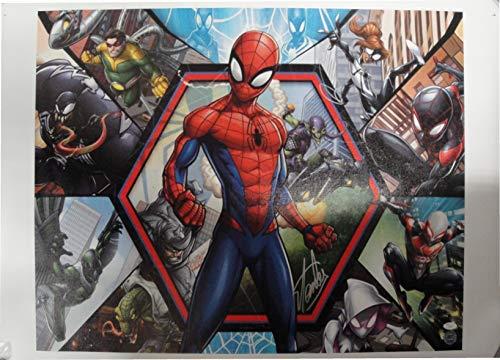 - Stan Lee Signed Autographed 26x36 Canvas Print Marvel Spider-Man JSA V67860