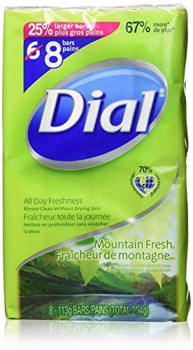 dial bar soap aloe - 2