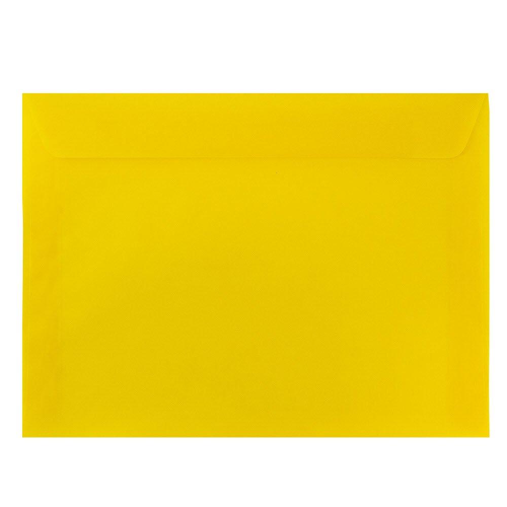 JAM PAPER 9 x 12 Booklet Translucent Vellum Envelopes - Clear - Bulk 250/Box JAM Paper & Envelope