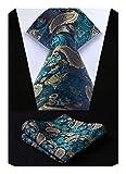 HISDERN Men's Paisley Tie Wedding Party 3.4' Necktie Woven Jacquard Neck Tie with Gift Box