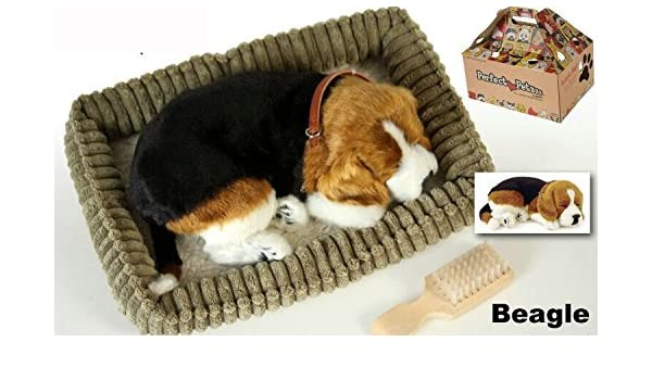 Perfect Petzzz - Cachorro Perro Beagle que respira de peluche: Amazon.es: Hogar