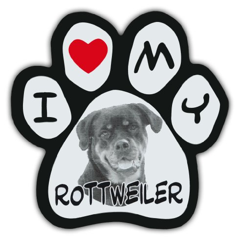 rottweiler pictures - 9