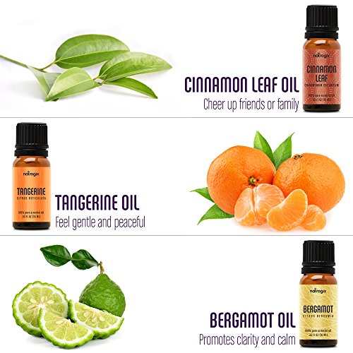Natrogix Nirvana Essential Oils - Top 18 Essential Oil Set 100% Pure Therapeutic Grade 18/10ml Incl. Lavender, Moroccan Rosemary, Tea Tree, Eucalyptus, Lemongrass and 13 More w/Free E-Book by Natrogix (Image #4)