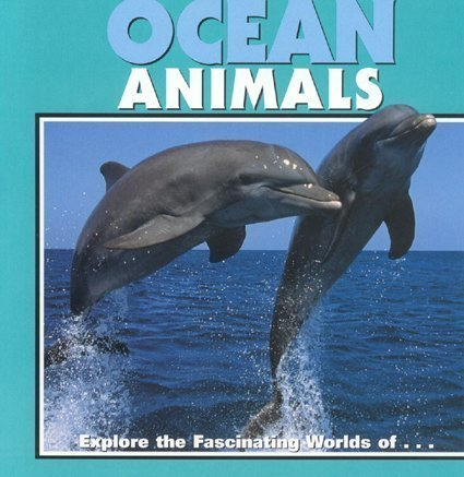 Ocean Animals: Exploring the Fascinating World of Sharks,