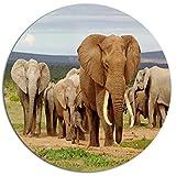 Designart ''Elephant Herd in Africa African Print'' Metal Artwork, 38 x 38'', Brown