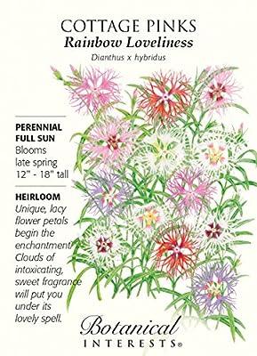 Cottage Pinks Rainbow Loveliness Seeds - 100 mg - Botanical Interests