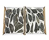 Black Kyanite Flat Box - Box Of Kyanite Fans