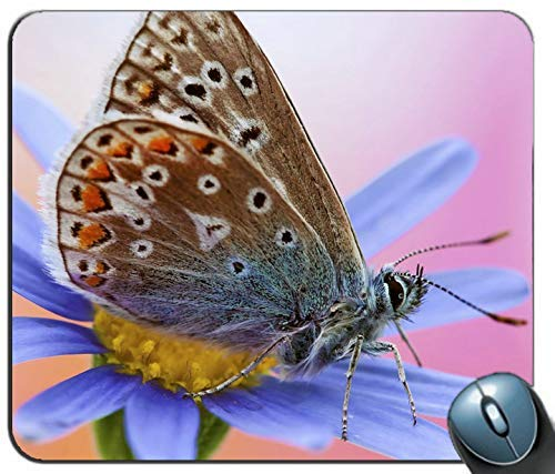 Animals Insects Artemis Personalized Rectangle Mouse Pad Printed Nonslip Rubber Comfortable Customized Computer Mouse Pad Mouse Mat Mousepad