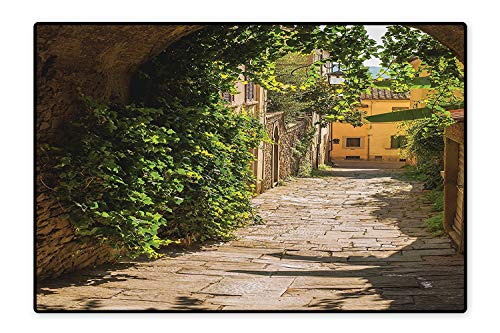 (Bath Rugs Streets of Tuscany Old Mediterranean Middle Age Town European High Culture Italy Photo Grey and Green Non-Toxic Non-Slip Reversible Waterproof 5'x8')