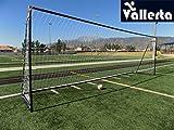 Vallerta 24 x 8 Ft.Regulation Size Soccer Goal w/Weatherproof HDPE Net. 50MM Diameter Industrial Grade Blk/Gld Powder Coated Galvanized Steel. Portable 8x24 Foot Training Aid(1Net) ONE Year Warranty!