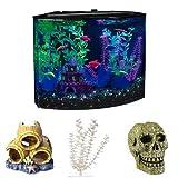GloFish Aquarium Kit Starter Bundle