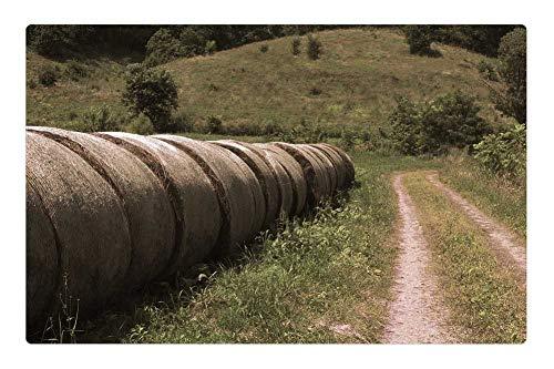 (Tree26 Indoor Floor Rug/Mat (23.6 x 15.7 Inch) - Hay Bails Photography Farm Field Haystack)