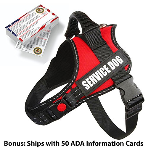 (Just 4 Paws Service Dog Harness Jacket with Padded Handle | 6 Sizes | Adjustable Straps & 2 Removable Reflective Patches + 50 ADA Information Cards - Extra Small (XS) Chest Size 17-1/2