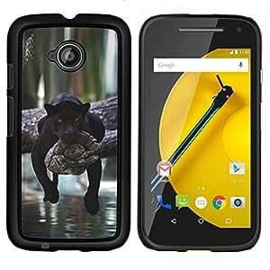 YiPhone /// Prima de resorte delgada de la cubierta del caso de Shell Armor - pantera perezoso sueño gato grande lindo África - Motorola Moto E2 E2nd Gen