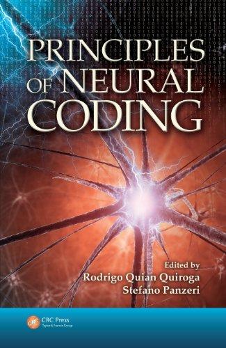 Principles of Neural Coding Pdf