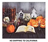Lighted Halloween Jack o Lantern Pumpkin Skulls Canvas Wall Hanging Fall Decor