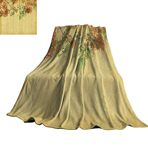 Vintage Decor Collection Blanket Sheets Blossomed Lovely Peacock Flowers on Tree with Vintage Paper Colorful Bliss Enjoy 60