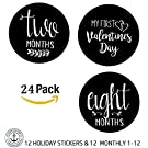 Unisex Monthly Baby Stickers Boys and Girls 24 Pack- Memorable Milestones stickers by The Hamptons Baby, baby belly stickers up to one year (Month by Month)! Baby Shower Gift, Baby Stickers Boy