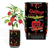 Challenge Super Hot Carolina Reaper Plant Kit