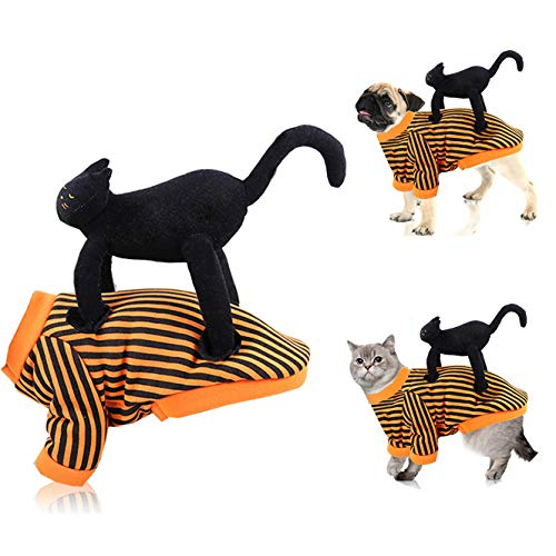 CT COUTUDI Pet Halloween Costume for Small Dog Cat Funny Hoodie, Halloween Spider Pet Costume, Dog Cat Funny Party Dress up Accessories (2XL, Cat)