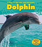 Image of The Day of the Dolphin