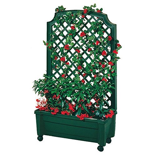 Exaco Trading 1.416Green Calypso Planter with Trellis and Self Watering System, Green by Exaco Trading Company