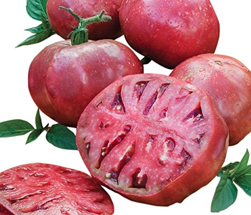 - Organic Cherokee Purple Heirloom Tomato Seeds - Large Tomato - One of The Most Delicious Tomatoes for Home Growing, Non GMO - Neonicotinoid-Free.