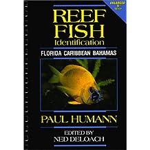 Reef Fish Identification: Florida, Caribbean, Bahamas