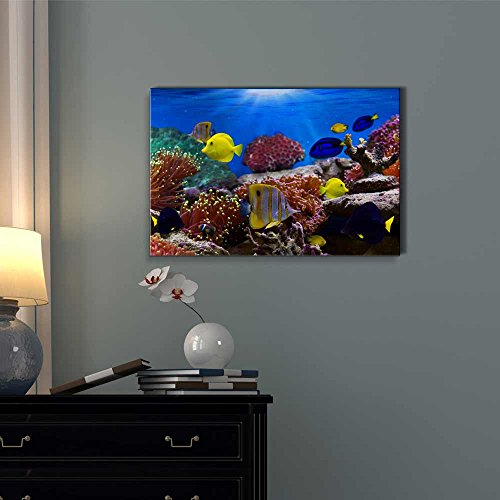 Coral Reef and Tropical Fish Under The Ocean