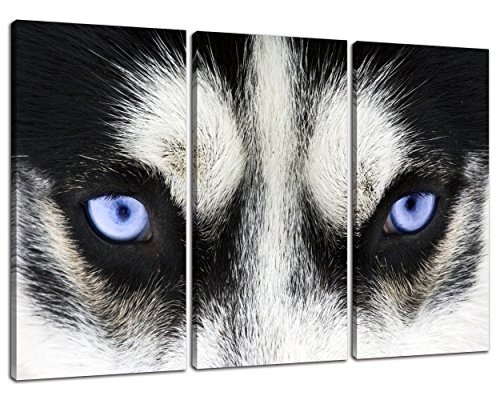 NAN Wind 3Pcs Modern Giclee Canvas Prints Black and White Wolf Dog with Blue Eyes Poster Wall Art Animal Face Head Series Paintings on Canvas Stretched and Framed Ready to Hang for Home Decor (Decorating Animal Print Ideas Bathroom)