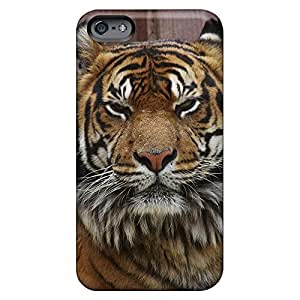 Covers phone carrying cases Forever Collectibles Ultra iphone 6plus 6p - staring tiger