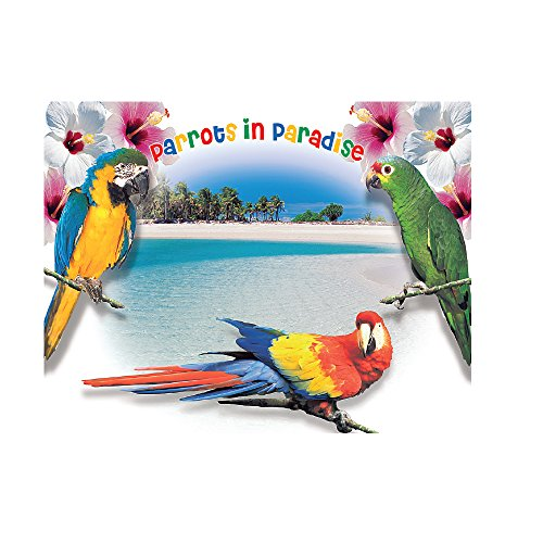 - Laminated Graphic Placemat - Set of 4 Geographical Parrots Fun Place Mats 11.5
