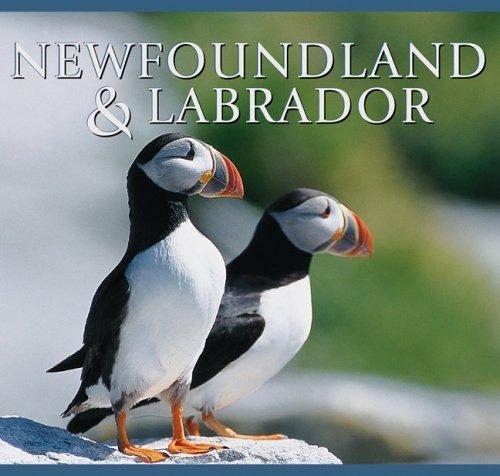 Download Newfoundland and Labrador (Canada Series) pdf epub