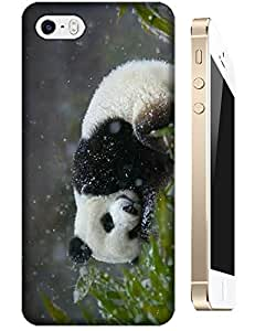 Lovely Panda Sleep in the Snow day cell phone cases For Apple Accessory iPhone 5C