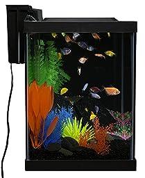 GloFish 20 Gallon Aquarium Kit