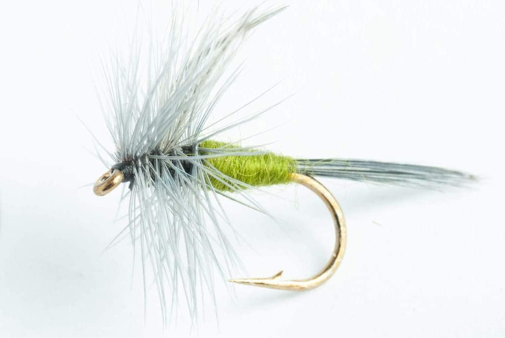 6 Pack Blue Wing Olive Stimulator Dry Fly