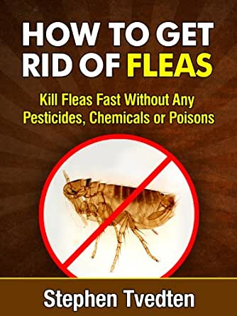 how to get rid of fleas in your home fast
